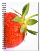 Fresh Red Strawberry Spiral Notebook
