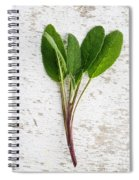 Fresh Sage Spiral Notebook