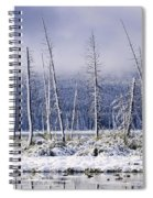 Fresh Snowfall And Bare Trees Spiral Notebook