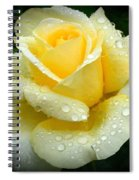 Fresh Sunshine Daydream Rose Spiral Notebook