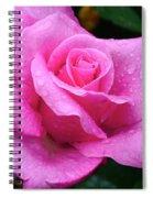 Fresh Sweet Surrender Rose Spiral Notebook
