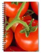 Fresh Whole Tomatos On Vine Spiral Notebook