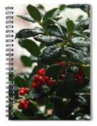 Fresh Winter Rain Spiral Notebook