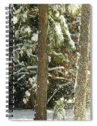 Freshly Blowing Snow Spiral Notebook