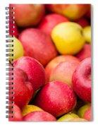 Freshly Harvested Colorful Crimson Crisp Apples On Display At Th Spiral Notebook