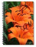 Freshly Showered Tiger Lilys Spiral Notebook