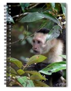 Friars Minor Spiral Notebook