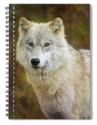 Friendly Beauty.. Spiral Notebook