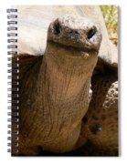 Friendly Tortoise Spiral Notebook