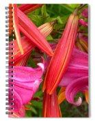Friends In The Garden Spiral Notebook
