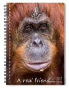 Friendship Card Spiral Notebook