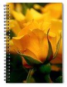 Friendship Roses Spiral Notebook
