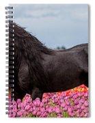 Friesian Fleur Spiral Notebook