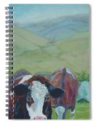 Friesian Holstein Cows Spiral Notebook