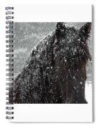 Friesian Snow Spiral Notebook