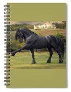 Friesian Stallion Tije Spanish Walk Spiral Notebook