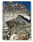 Frigid At The Peak Spiral Notebook