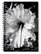 Frills And Hibiscus Flowers Spiral Notebook