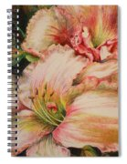Frilly Pinks Spiral Notebook