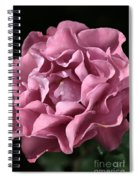 Frilly Rose Spiral Notebook