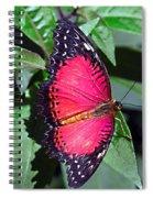 Fringed Spiral Notebook