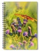 Fritillary On Thistle Spiral Notebook