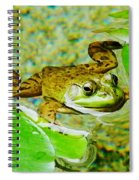 Frog  Abby Aldrich Rockefeller Garden Spiral Notebook