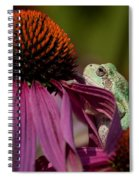Frog And His Cone Spiral Notebook