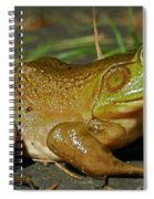 Frog At Night Spiral Notebook