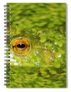 Frog In Single Celled Algae Spiral Notebook