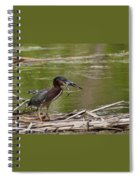 Frog Legs And Green Heron Spiral Notebook