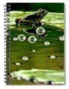 Frog Pond Space Galaxy Spiral Notebook