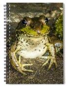 Frog Pose Spiral Notebook