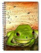 Froggy Heaven Spiral Notebook