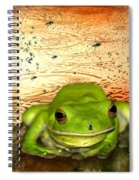 Froggy Heaven Spiral Notebook