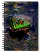 Froggy Smile Spiral Notebook