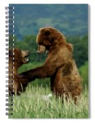Frolicking Grizzly Bears Spiral Notebook