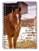 Frolicking In The Snow  Spiral Notebook