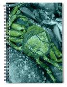 From Another Planet Spiral Notebook