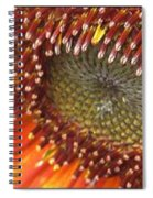 From Bud To Bloom - Sunflower Spiral Notebook