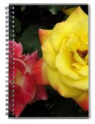 Red To Yellow Spiral Notebook