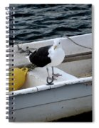 From Rockport Ma A Seagull Chilling Out In A Rowboat Spiral Notebook