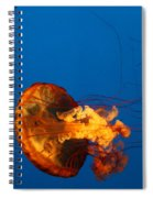From The Deep - Jelly Fish Spiral Notebook