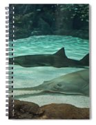 From The Deep - Sawtooth Ray Sharks Spiral Notebook