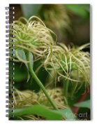 Fronds By Jammer Spiral Notebook