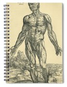 Front Of Male Human Body.anatomical Spiral Notebook