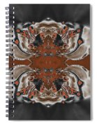 Frost And Woodsmoke 3 Spiral Notebook