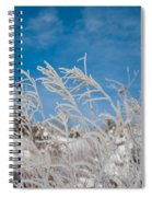 Frost Covered Grasses Against The Sky Spiral Notebook