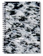 Frost Flakes On Ice - 06 Spiral Notebook