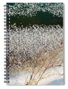 Frost Flakes On Ice - 13 Spiral Notebook